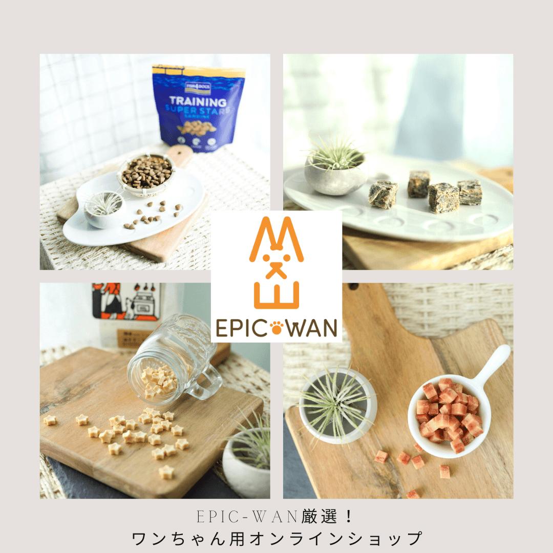 EPIC-WANオンラインショップ